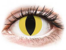 Kontaktní čočky Maxvue Vision - ColourVUE Crazy Lens - Cat Eye - nedioptrické (2 čočky)