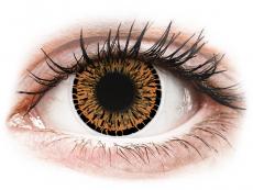Hnědé kontaktní čočky - nedioptrické - ColourVUE Elegance Brown - nedioptrické (2čočky)