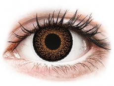 Hnědé kontaktní čočky - nedioptrické - ColourVUE Eyelush Brown - nedioptrické (2čočky)