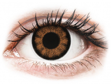Barevné kontaktní čočky - nedioptrické - ColourVUE BigEyes Sexy Brown - nedioptrické (2čočky)