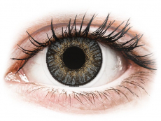 Barevné kontaktní čočky - FreshLook ColorBlends Grey - dioptrické (2čočky)