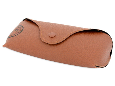 Ray-Ban Justin RB4165 865/T5  - Original leather case (illustration photo)