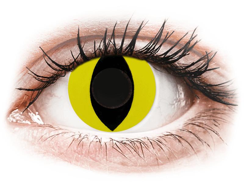 CRAZY LENS - Cat Eye Yellow - nedioptrické jednodenní (2 čočky) - Barevné kontaktní čočky