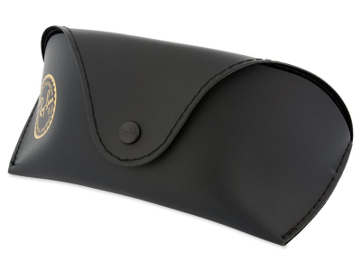 Ray-Ban RB2027 W1847  - Original leather case (illustration photo)