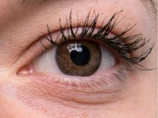 TopVue Color - dioptrické jednodenní (10čoček) - Brown na šedém oku
